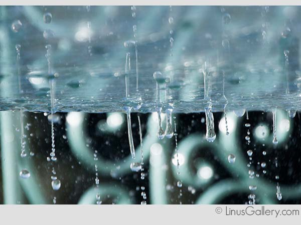 blue art galleries los angeles The Blue Show Artist Gracie Warwick | Droplets | Fine Art Photography