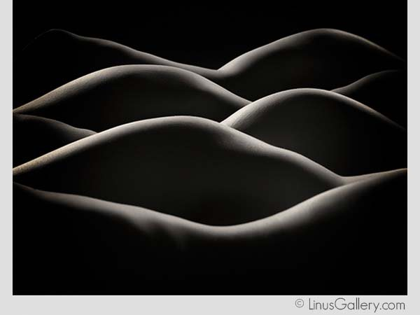 geometric art galleries pasadena 600x450 Curves & Lines Artist Craig Colvin | Rolling Hills | Fine Art Photography